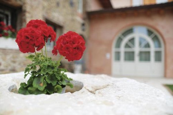 Residence Corte San Carlo - фото 18