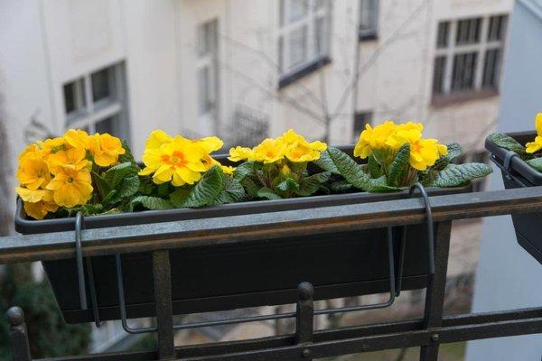 Luxury Apartment Maiselova - фото 3