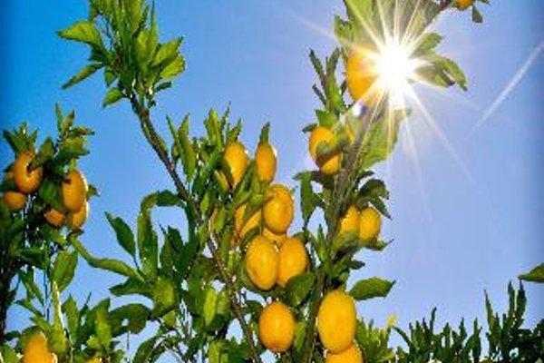 Bonaca Apartment Klek - фото 20