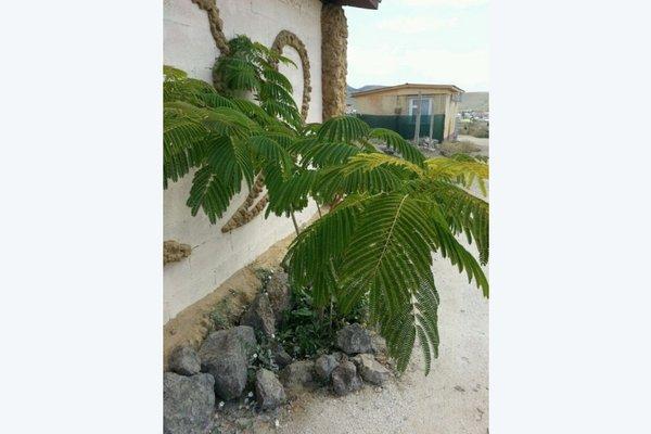 Мини-отель «Badem» - фото 23