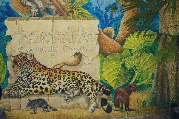 Hostelito Chetumal Hotel + Hostal - фото 19