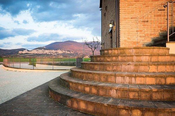 Assisium - фото 23