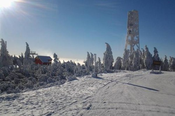 Pool Apartments - фото 23