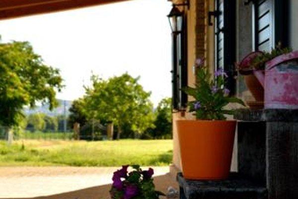 Osimo Apartments - фото 18