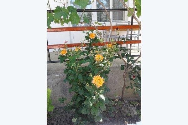 Гостевой Дом Севиля - 16