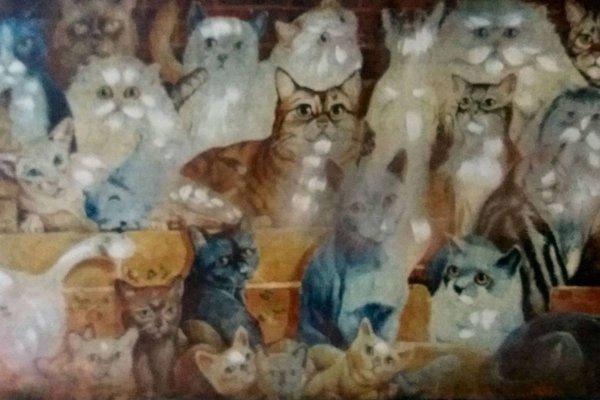 Gatti al Borgo - фото 17