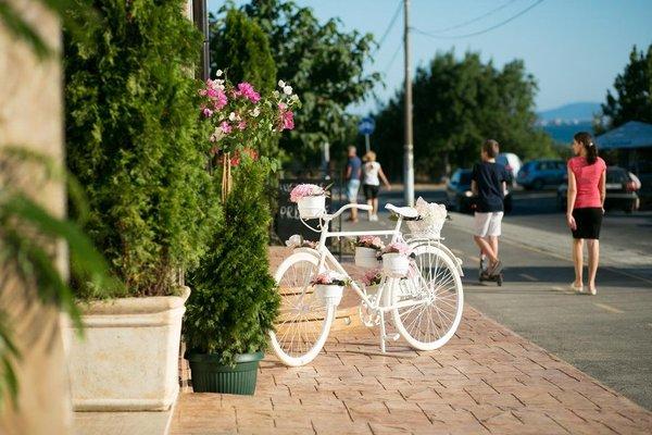 Family Hotel Provence - фото 16