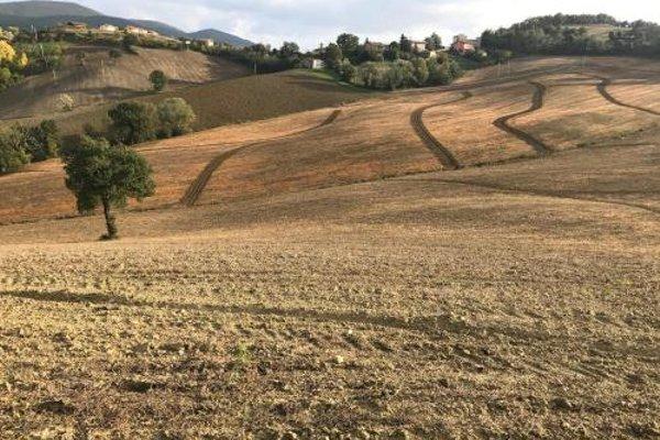 La Corte del Gusto LuxuryApartments - фото 16