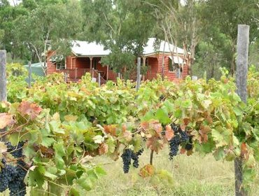 Guesthouse Fergies Hill Spa Cottage @ Granite Ridge Wines