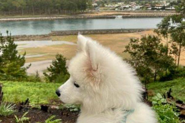 Apartamento Villaviciosa - фото 21