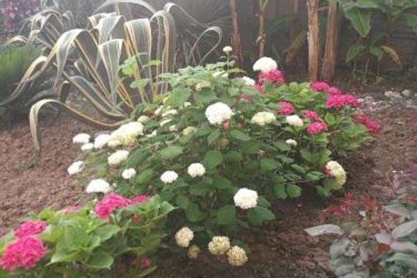 Guest House Villa Roza - 14