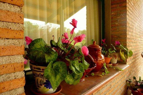 Casa Rural El Roblon - фото 10