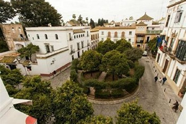 Apartamentos Plaza de Santa Cruz - фото 23