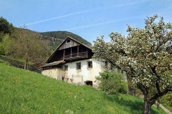 Pirchnerhof - фото 8