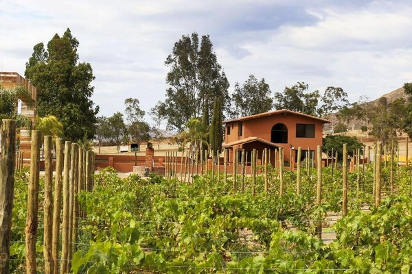 Casas de Bodegas del Valle by Hotel Boutique Valle de Guadalupe - фото 21