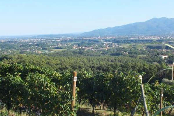Villa Casetta - фото 14