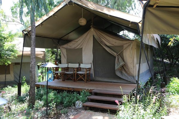 Wildebeest Eco Camp - 20
