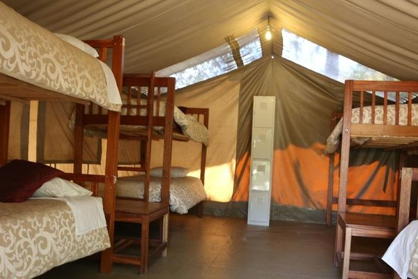Wildebeest Eco Camp - 8