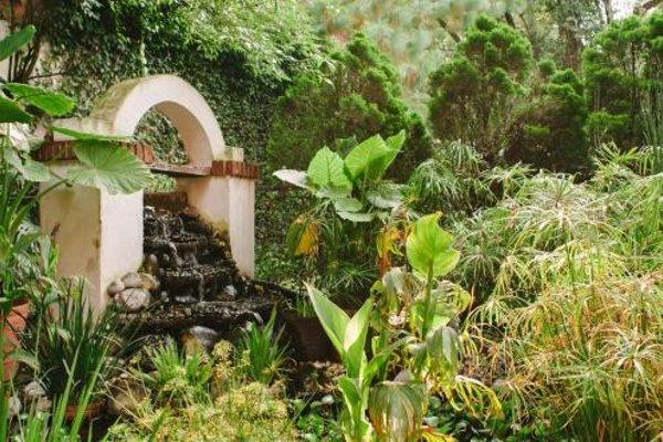 Villas Sol y Luna Coyoacan - фото 11