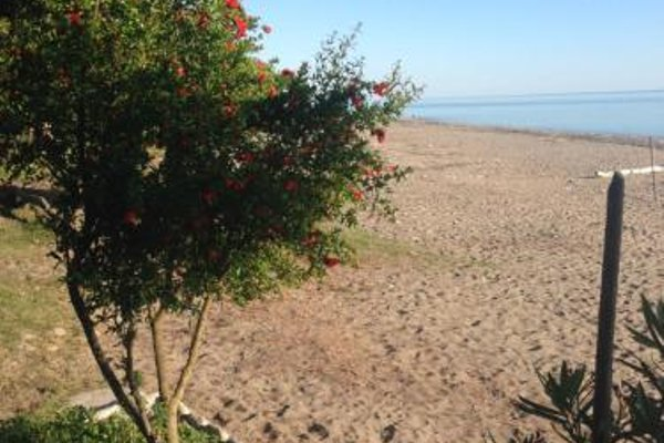 Private house - photo 6