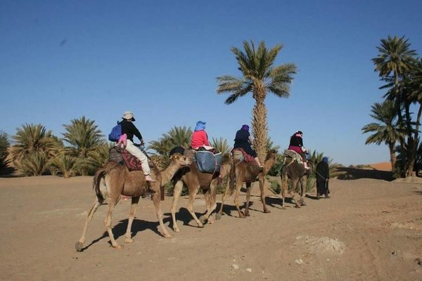 Bivouac Sahara Relax - 16