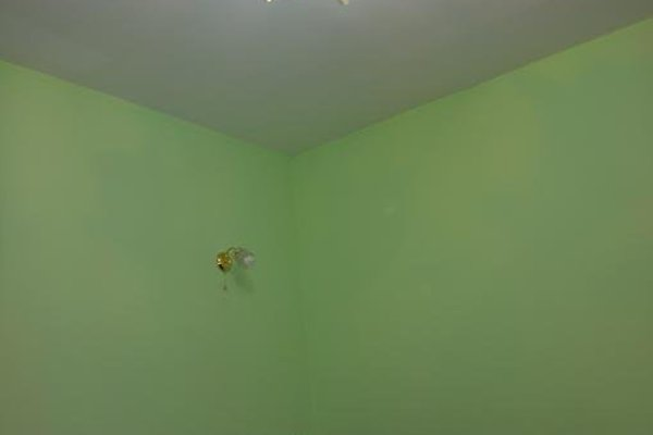 Золотой Мустанг - фото 10