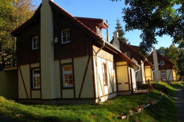Trzy kultury Zloty Widok - фото 13