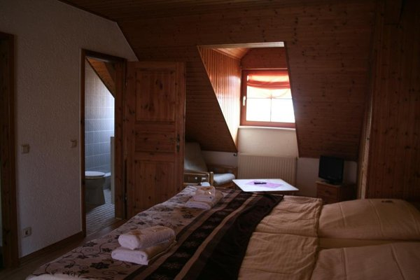 Landgasthof Hotel Rebe Alzey - 8