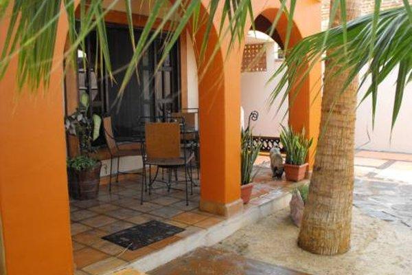 Leo's Baja Oasis - фото 16