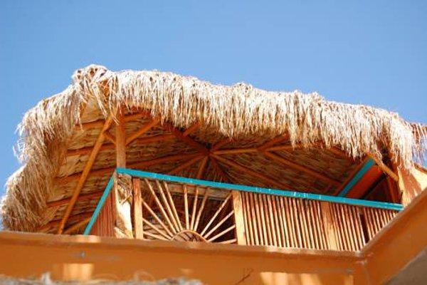 Leo's Baja Oasis - фото 23