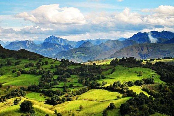 Rural Amada Carlota - фото 21