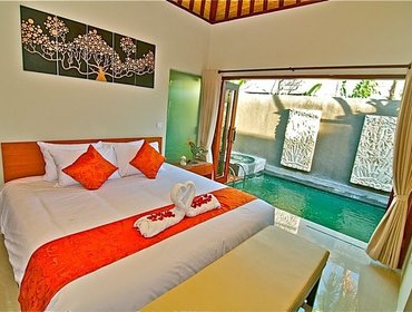 Apartments 1 Bedroom Villa Private Pool & Jacuzzi