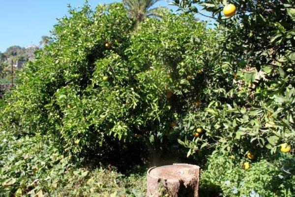 Casa Rural El Liron - фото 18