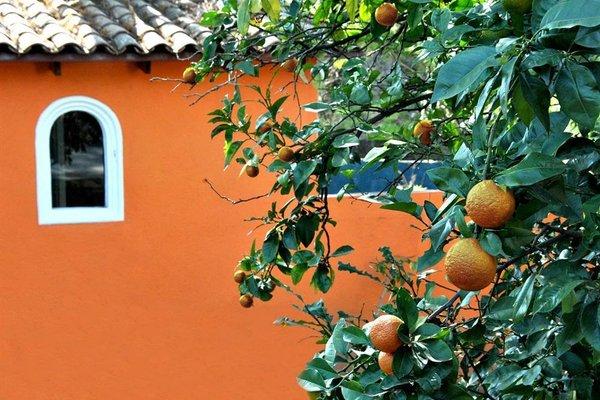 L'Orangerie - фото 16