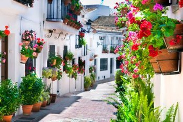 Apartment in Benalmadena, Malaga 100013 - 5