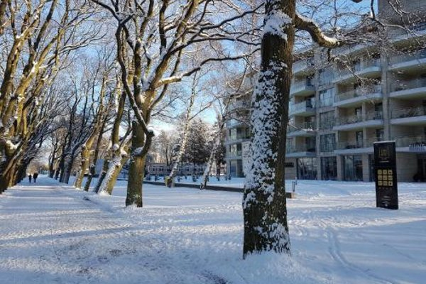 Apartament prywatny 327 w Diune Resort - фото 13