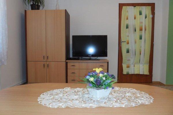 Apartment Blehovi - фото 6