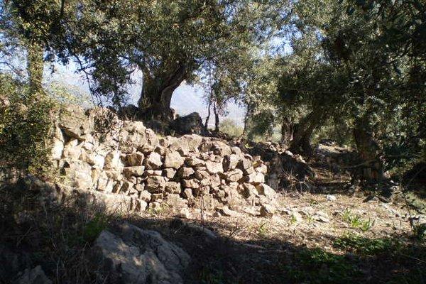 La Atalaya de Los Romanes - фото 22