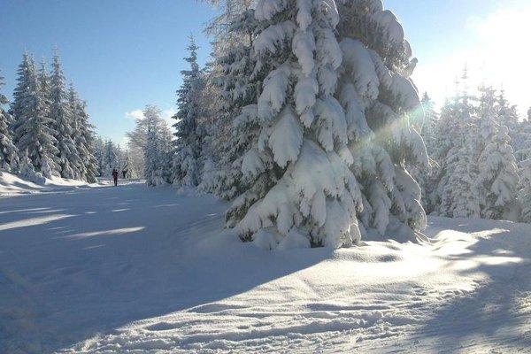 Horska Chata Hubert - фото 18