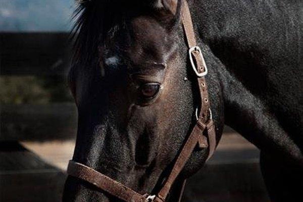 Lantero Horse & Lodge - 18