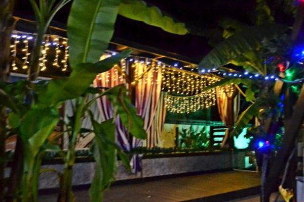 U Palycha Guest House - photo 13