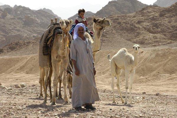 Al Sayadeen Village Red Sea Riviera - фото 10