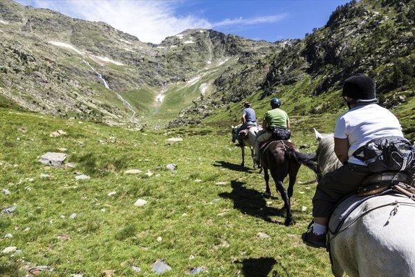 TMC Apartaments - фото 12