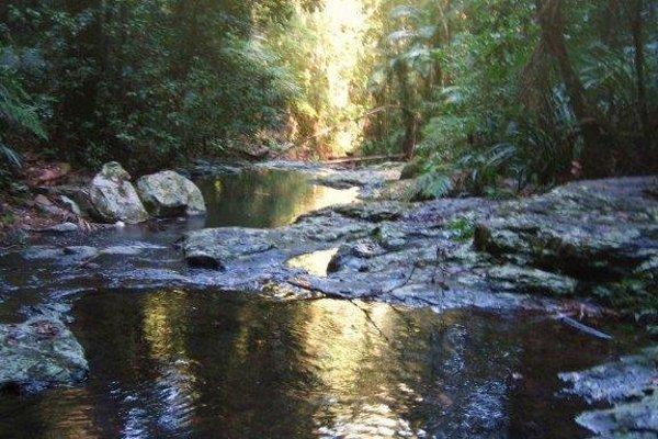 Havan's Ecotourist Retreat - фото 18