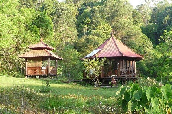 Havan's Ecotourist Retreat - фото 20