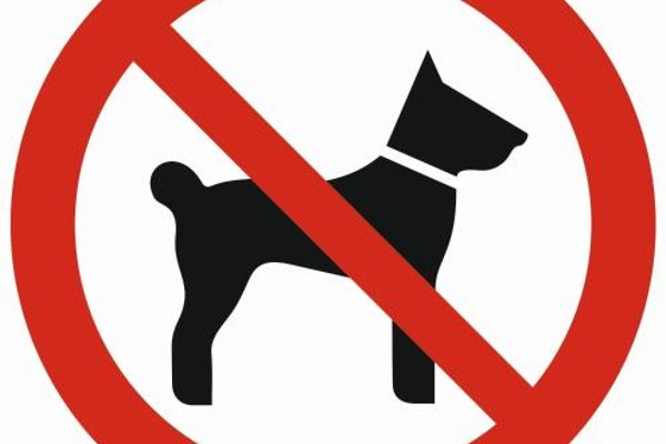 Apartamenty Top Zakopane - фото 7