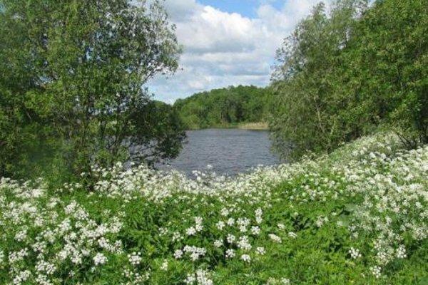 Агроусадьба Беловежская Гостевая - фото 21