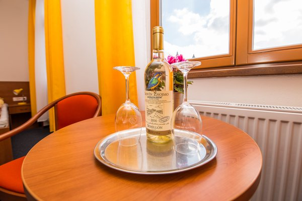 Hotel Morava - 10