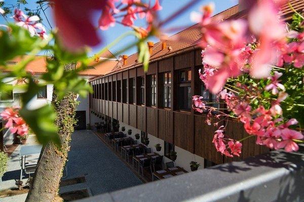 Hotel Restaurant Darwin - фото 17