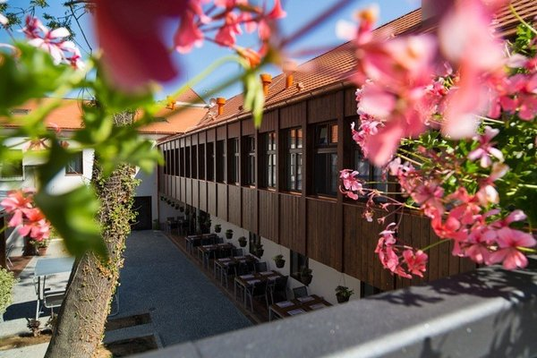 Hotel Restaurant Darwin - 17